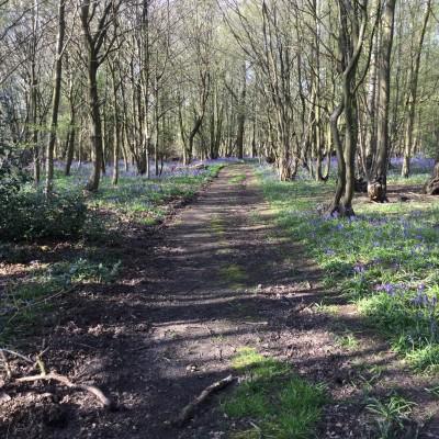 Spring arrives at Lockley Farm