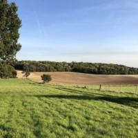 Autumn Approaches at Lockley Farm